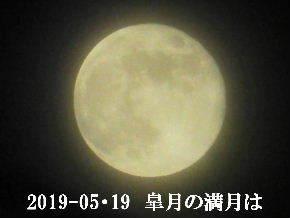 2019-05・20 皐月の満月は・・・ (2).JPG