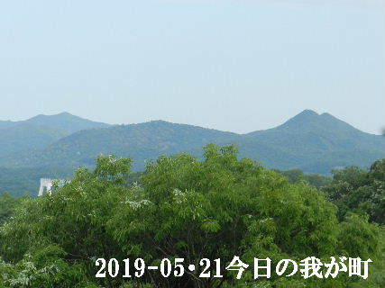 2019-05・21 今日の我が町.JPG