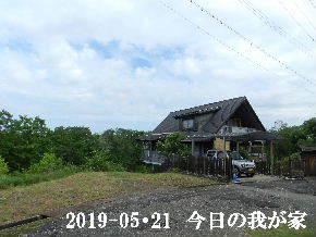 2019-05・21 今日の里山模様・・・ (1).JPG