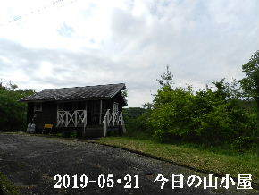 2019-05・21 今日の里山模様・・・ (2).JPG