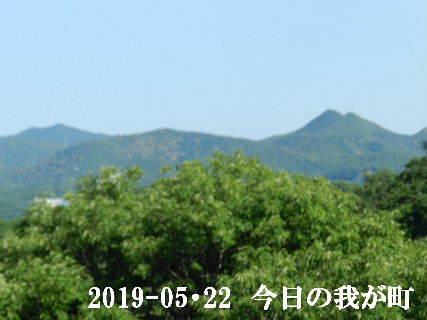 2019-05・22 今日の我が町.JPG