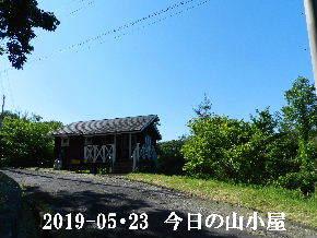 2019-05・23 今日の里山模様・・・ (2).JPG