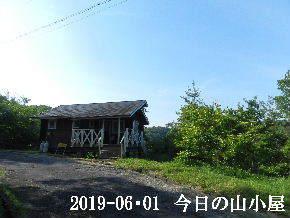 2019-06・01 今日の里山模様・・・ (2).JPG