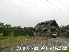 2019-06・02 今日の里山模様・・・ (1).JPG
