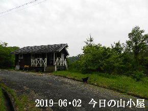 2019-06・02 今日の里山模様・・・ (2).JPG