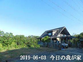 2019-06・03 今日の里山模様・・・ (1).JPG
