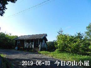 2019-06・03 今日の里山模様・・・ (2).JPG