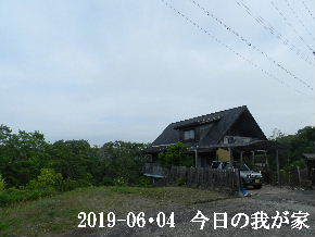 2019-06・04 今日の里山模様・・・ (1).JPG
