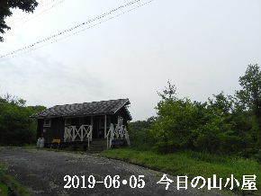 2019-06・05 今日の里山模様・・・ (2).JPG