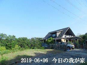 2019-06・06 今日の里山模様・・・ (1).JPG