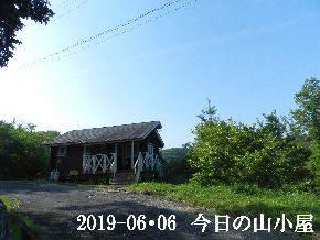 2019-06・06 今日の里山模様・・・ (2).JPG