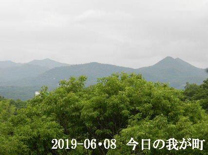 2019-06・08 今日の我が町.JPG