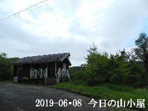 2019-06・08 今日の里山模様・・・ (2).JPG