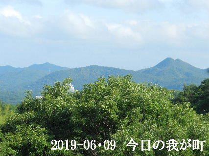 2019-06・09 今日の我が町.JPG