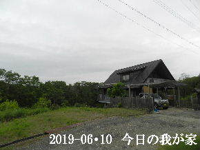 2019-06・10 今日の里山模様・・・ (1).JPG