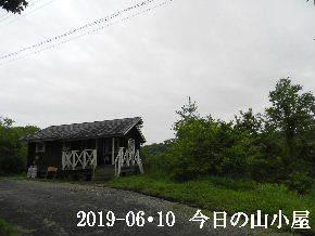 2019-06・10 今日の里山模様・・・ (2).JPG
