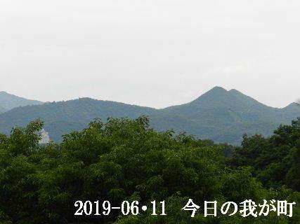 2019-06・11 今日の我が町.JPG