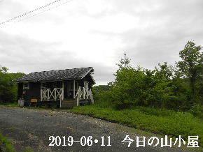 2019-06・11 今日の里山模様・・・ (2).JPG