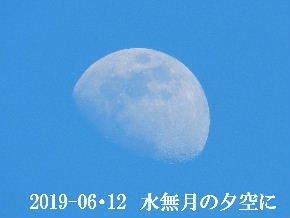 2019-06・12 水無月の夕空に・・・ (1).JPG