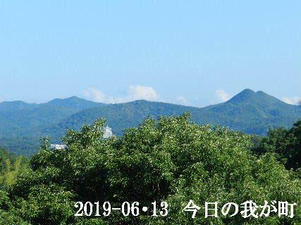 2019-06・13 今日の我が町.JPG