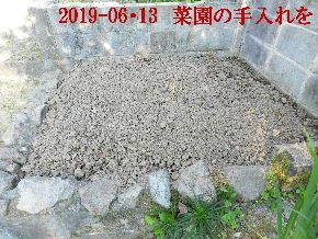 2019-06・13 我が家のスナップ・・・ (4).JPG