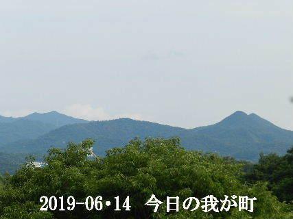 2019-06・14 今日の我が町.JPG