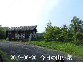 2019-06・20 今日の里山模様・・・ (2).JPG