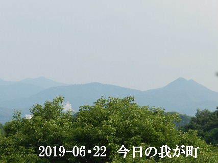 2019-06・22 今日の我が町.JPG
