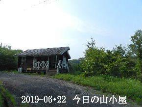 2019-06・22 今日の里山模様・・・ (2).JPG