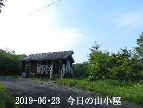 2019-06・23 今日の里山模様・・・ (2).JPG