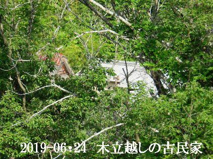 2019-06・24 今日の古民家模様.JPG