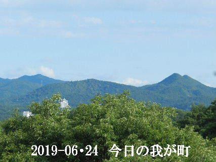 2019-06・24 今日の我が町.JPG