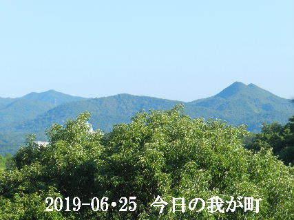 2019-06・25 今日の我が町.JPG
