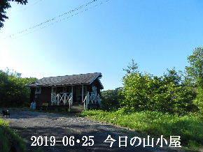 2019-06・25 今日の里山模様・・・ (2).JPG