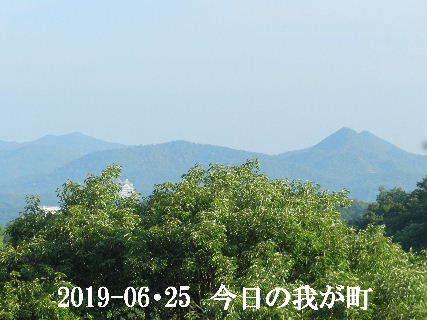 2019-06・26 今日の我が町.JPG