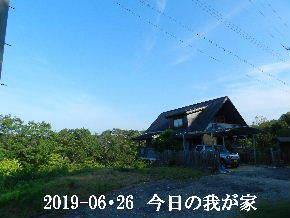 2019-06・26 今日の里山模様・・・ (1).JPG
