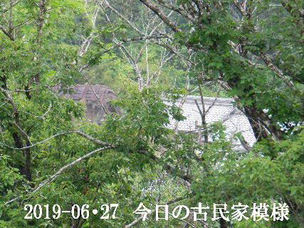 2019-06・27 今日の古民家模様.JPG