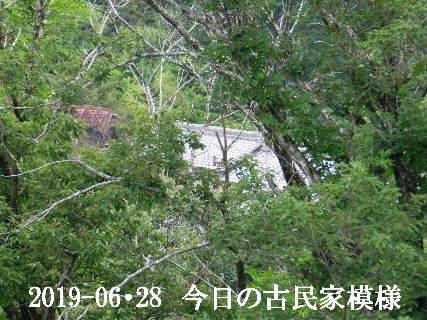 2019-06・28 今日の古民家模様.JPG
