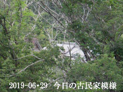 2019-06・29 今日の古民家模様.JPG