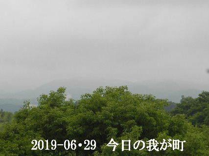2019-06・29 今日の我が町.JPG
