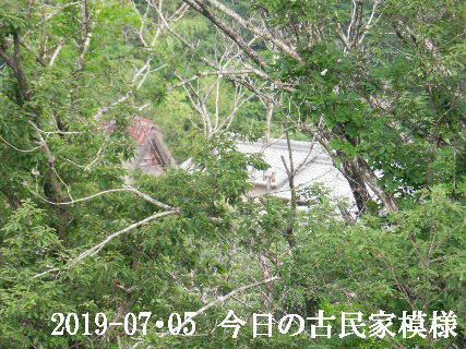 2019-07・05 今日の古民家模様.JPG
