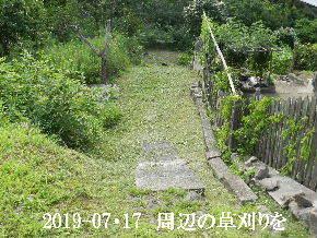 2019-07・17 周辺の草刈りを (2).JPG