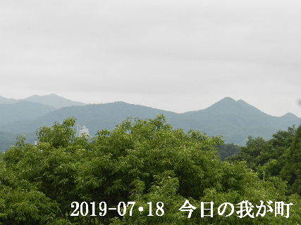 2019-07・18 今日の我が町.JPG