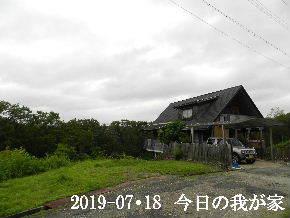 2019-07・18 今日の里山模様・・・ (1).JPG