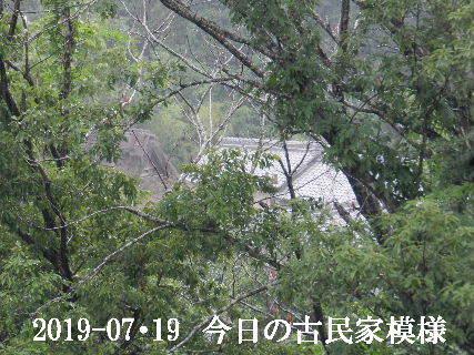 2019-07・19 今日の古民家模様.JPG