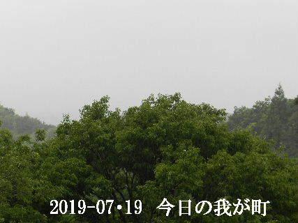 2019-07・19 今日の我が町.JPG