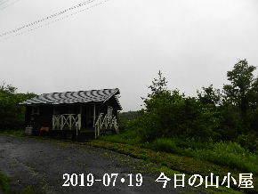 2019-07・19 今日の里山模様・・・ (2).JPG