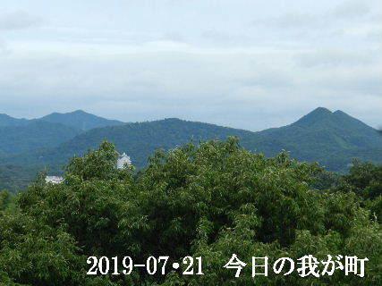 2019-07・21 今日の我が町.JPG