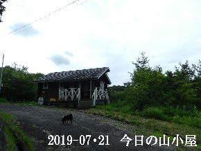 2019-07・21 今日の里山模様・・・ (2).JPG