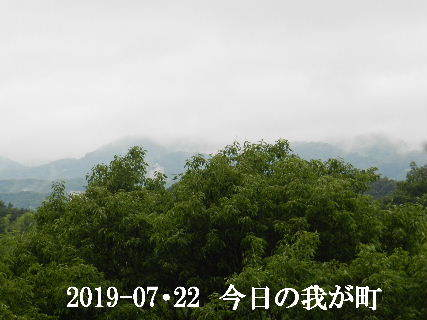 2019-07・22 今日の我が町.JPG